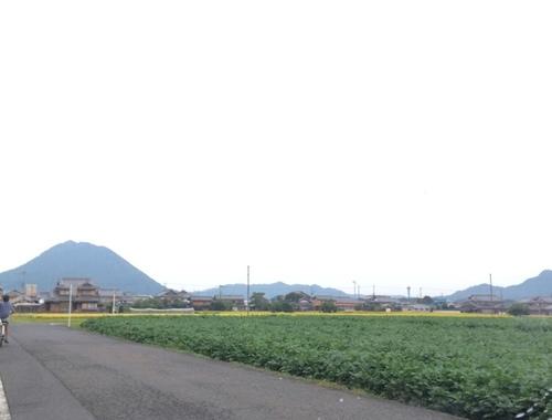 近江富士 三上山 三上神社.JPG