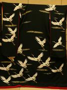 花嫁 引き振袖 クラシカルな黒地 白鶴