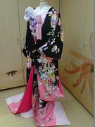 色打掛 黒×ピンク 花丸紋刺繍