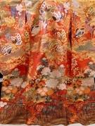 色打掛 関西 牡丹に蝶々